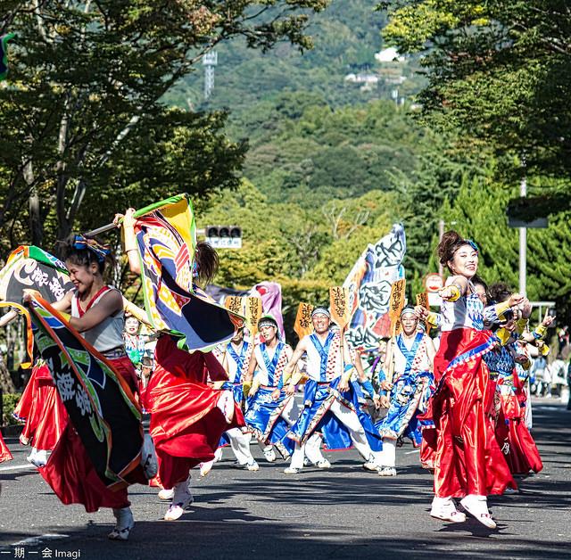 Yosakoi_Festival
