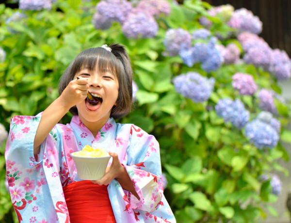 Japan Festival 2016